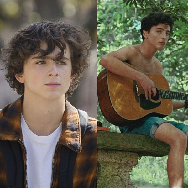 Timothée Chalamet in Beautiful Boy, Call Me by Your Name en The King