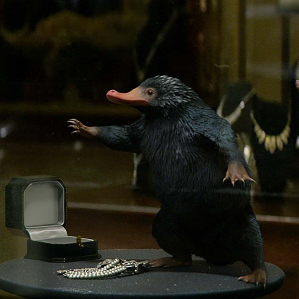 Een Niffler in Fantastic Beasts and Where to Find Them