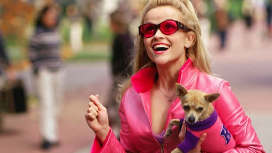 legally blonde elle woods reese witherspoon roze hondje